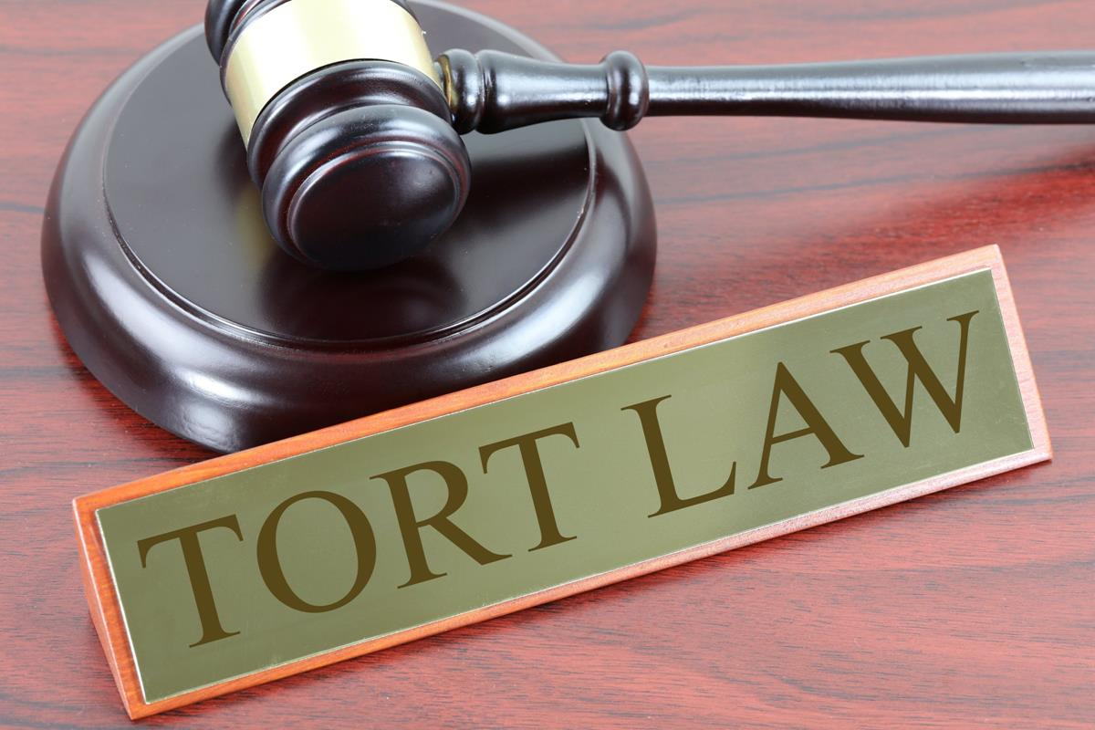 Difference Between Contract and Tort