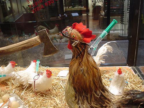 Difference Between Bird Flu and Swine Flu