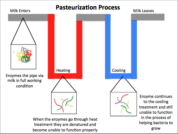 Difference Between Sterilization and Pasteurization