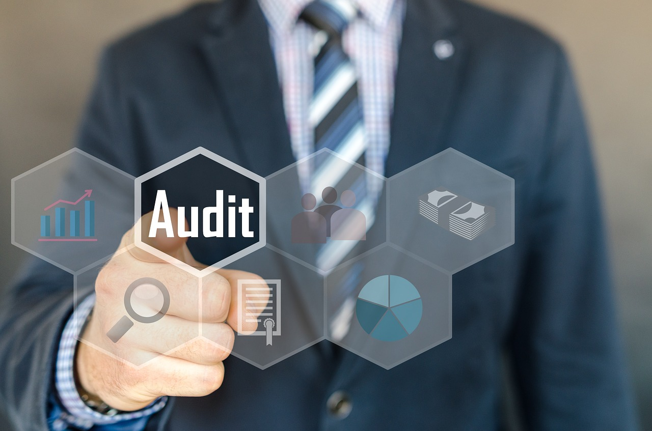Examination Inspection Auditor Audit Accounting