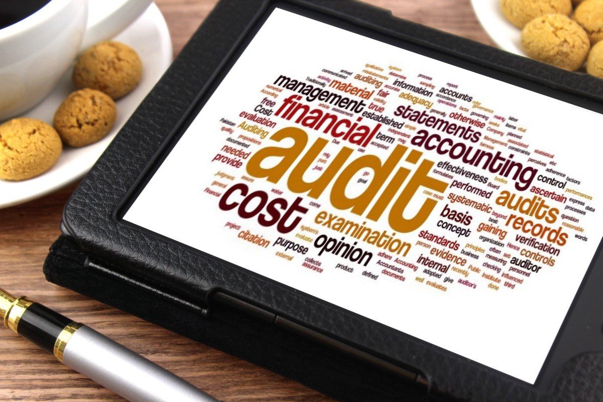 Difference Between Financial Audit and Management Audit