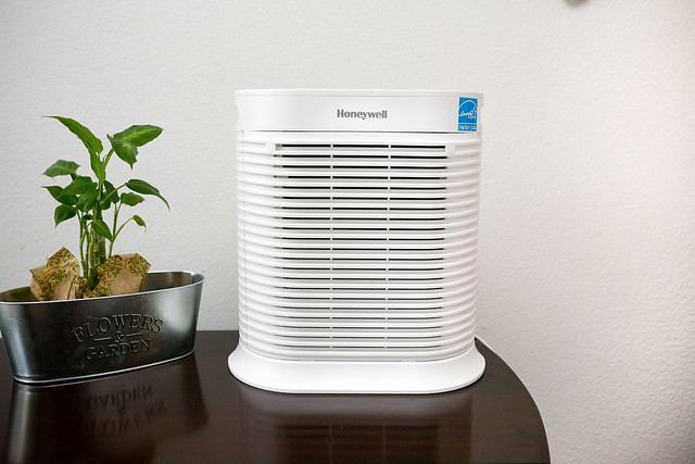 Difference Between Air Purifier and Dehumidifier
