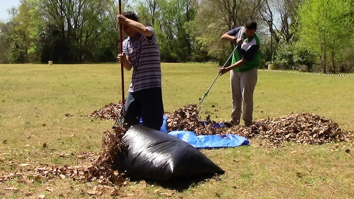 Difference Between Bagging and Mulching