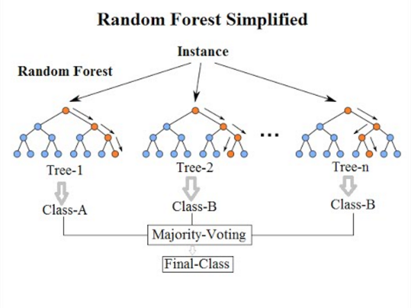 Difference Between Bagging and Random Forest