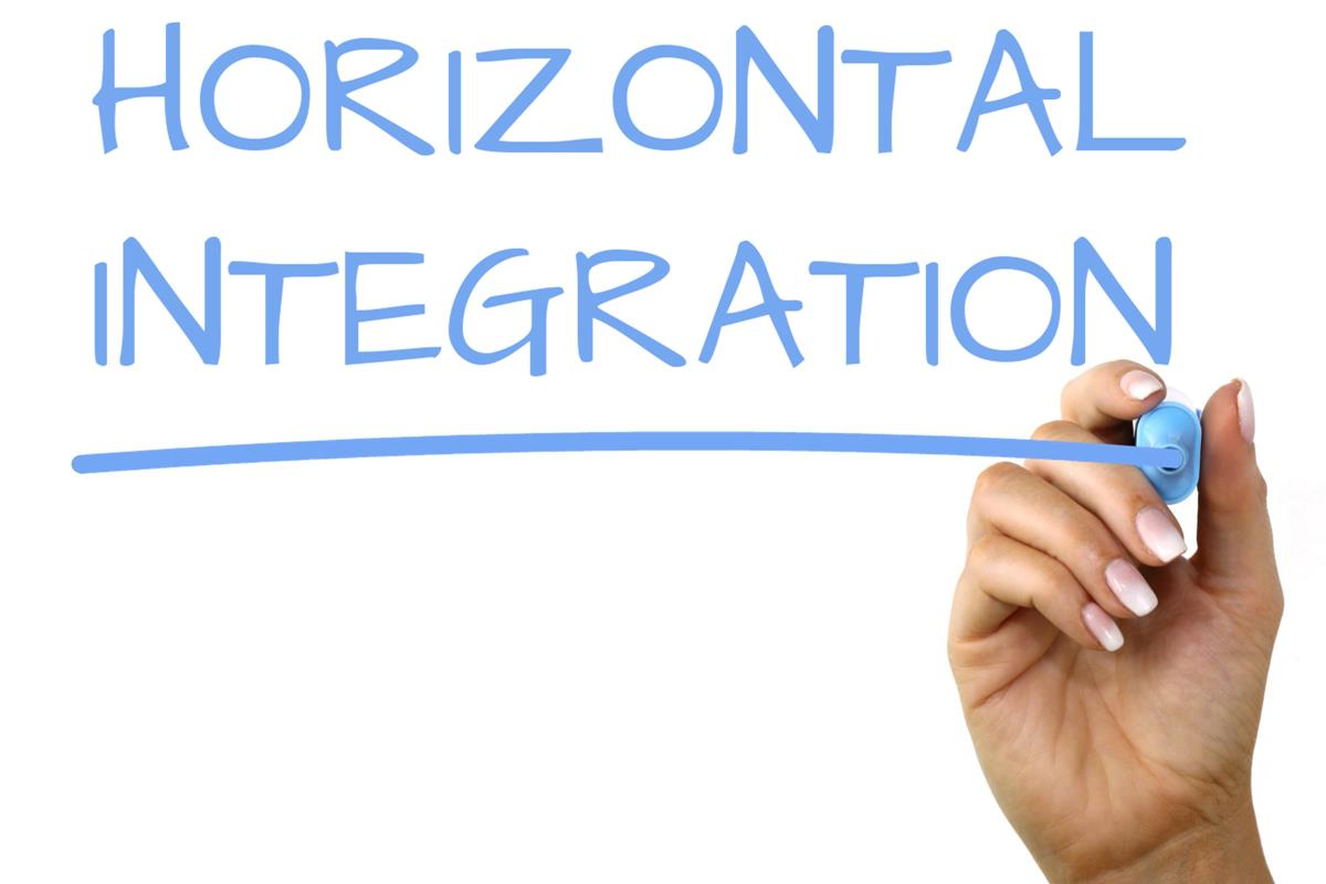 Difference Between Horizontal Integration and Vertical Integration