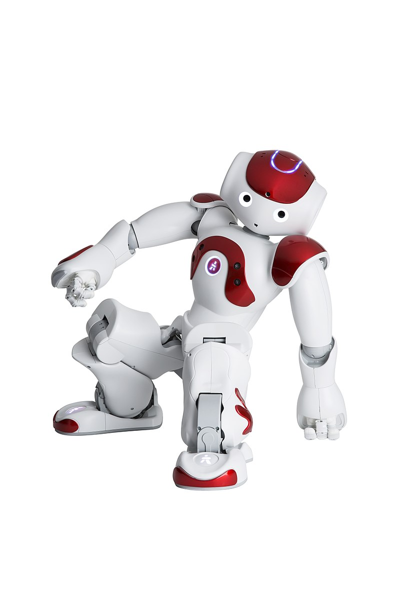 Difference Between Humanoid and Robot