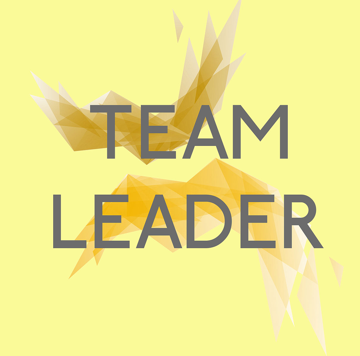 Difference Between Subject Matter Expert and Team Leader