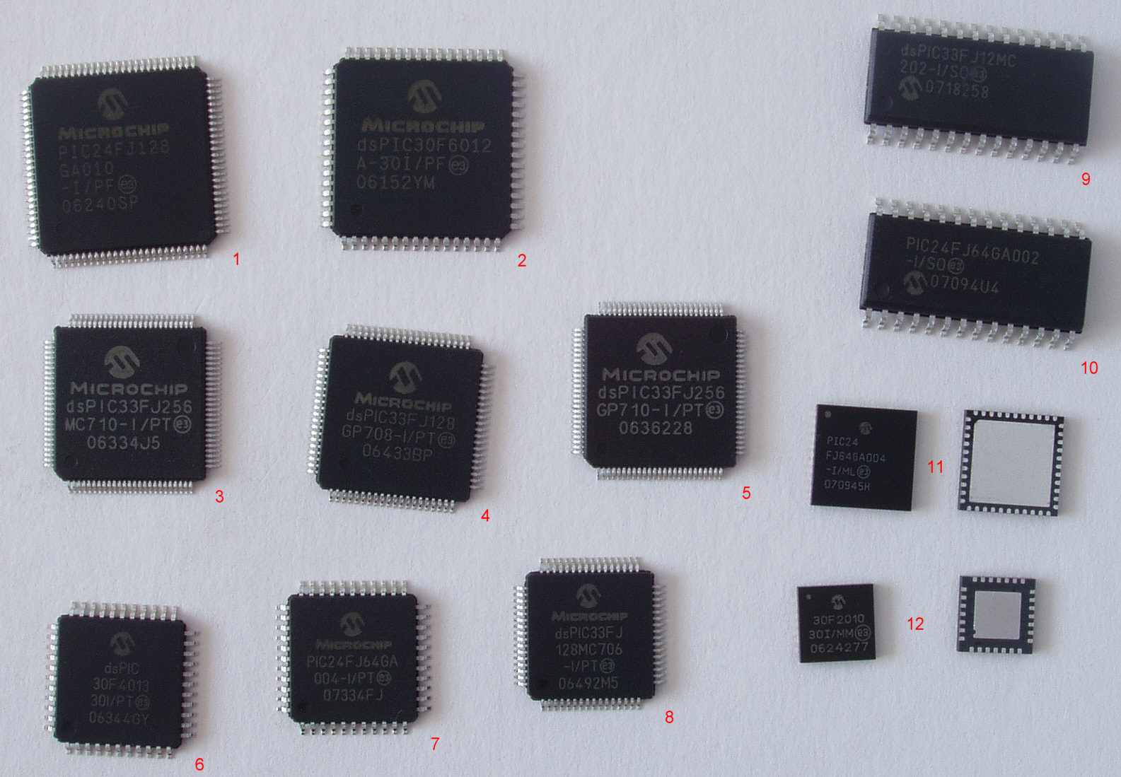Difference Between Biochip and Microchip