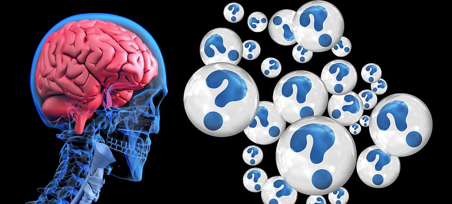 Difference Between Dementia and Vascular Dementia