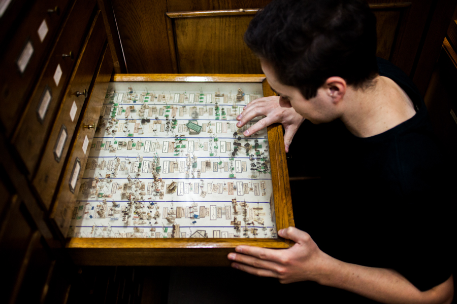 Difference Between Entomologist and Etymologist