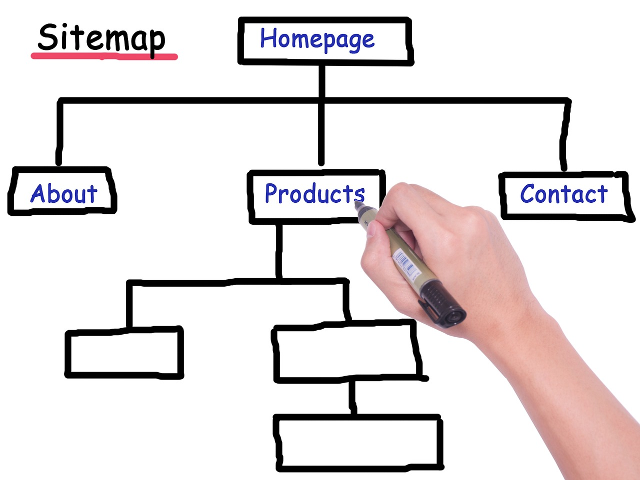 Difference Between Sitemap and Wireframe