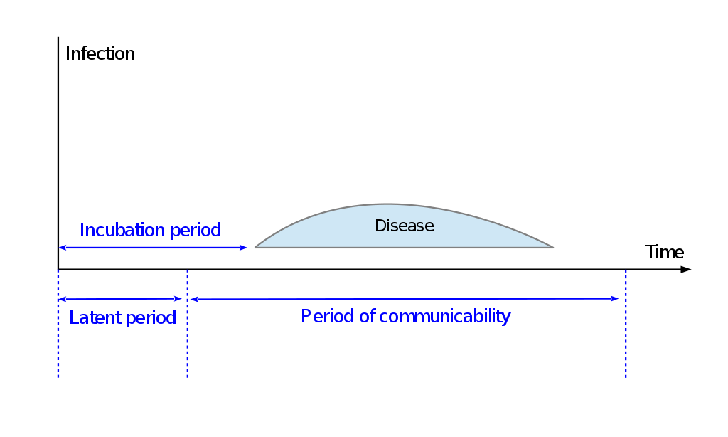 Difference Between Incubation Period and Communicable Period
