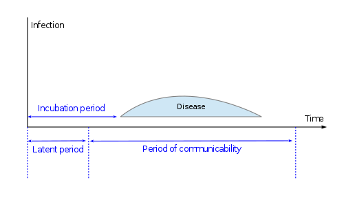 Difference Between Incubation Period and Infectious Period