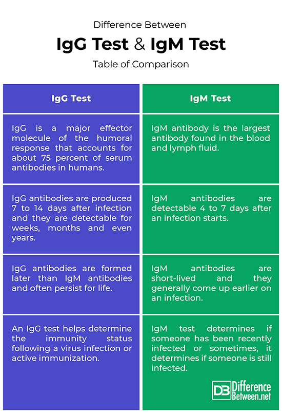 Difference Between Antibody Test IgG and IgM | Difference