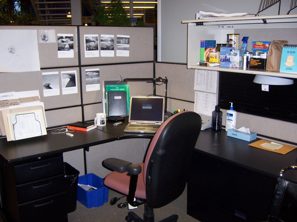 Difference Between a Virtual Office and Physical Office