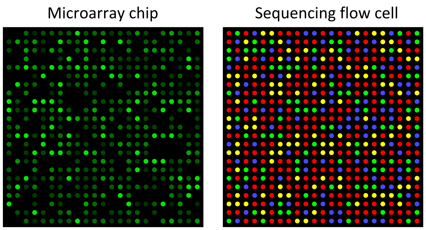 Difference Between Whole Genome Sequencing and Microarray