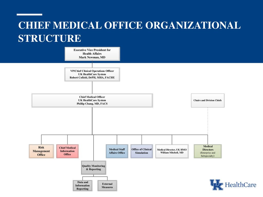 Chief Medical Office Organizational Structure