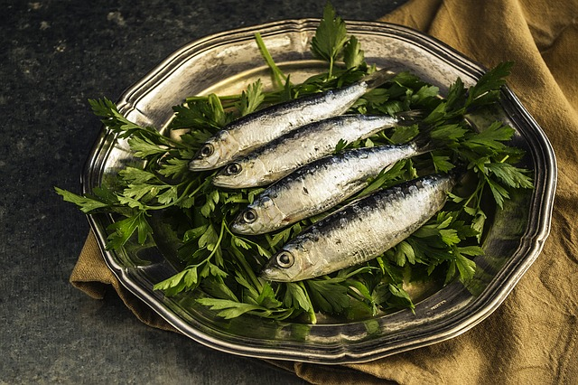 Difference Between Herring and Sardines