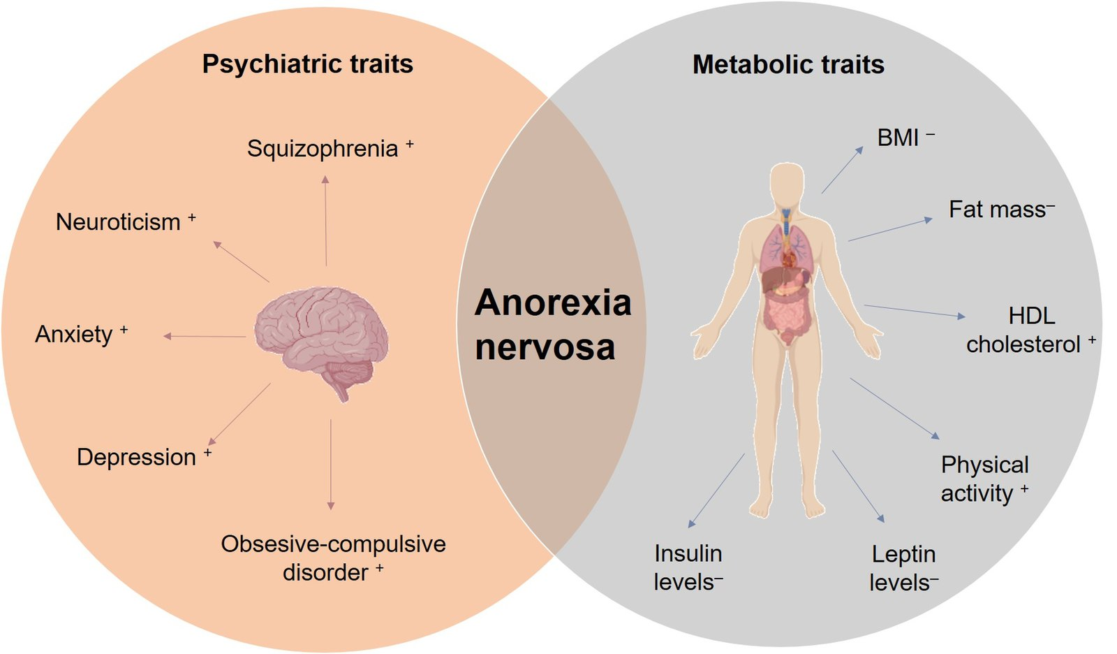 Difference between ARFID and Anorexia nervosa