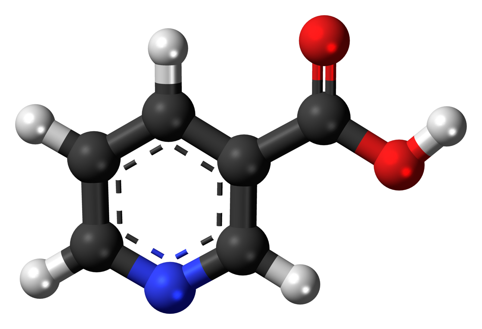 Difference Between Niacin and Niacinamide